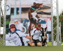 Purina Incredible Dog Challenge Finals 2013