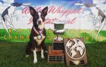 AWI World Championship 2015