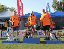 2011 Skyhoundz World Champion Torch!