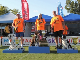2011 Skyhoundz World Champion Torch!
