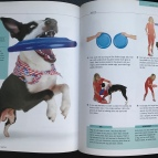 Flash, Pages 120 & 121, 10-Minute Dog Training Games
