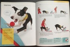 Flash, Pages 146 & 147, 10-Minute Dog Training Games