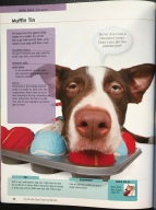 Torch, Page 46, 10-Minute Dog Training Games