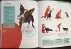 Flash, Pages 118 & 119, 10-Minute Dog Training Games
