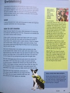 Flash, Page 59, 101 Ways to Do More with Your Dog!