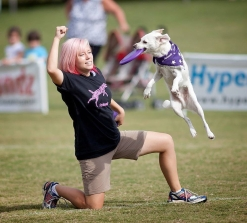 Spirit - 2014 Skyhoundz World Championship
