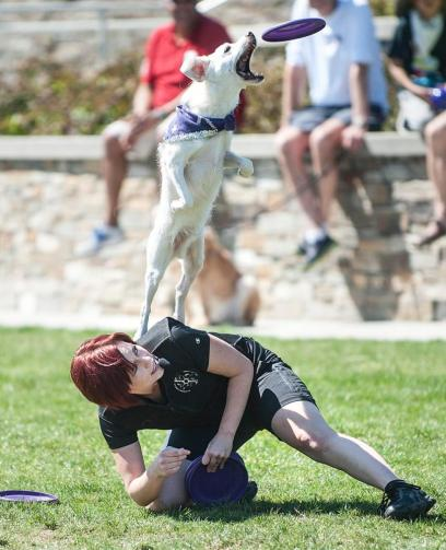 Spirit - Performing at the Lake Forest Pet Expo