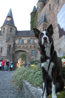 Torch visiting a castle in Germany