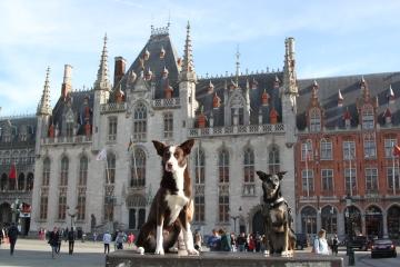 Torch sightseeing in Brugge, Belgium