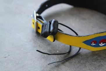 Loop through device & around collar.