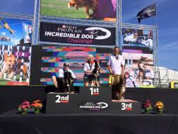4x Purina Incredible Dog Challenge Western Regional Champion Torch!